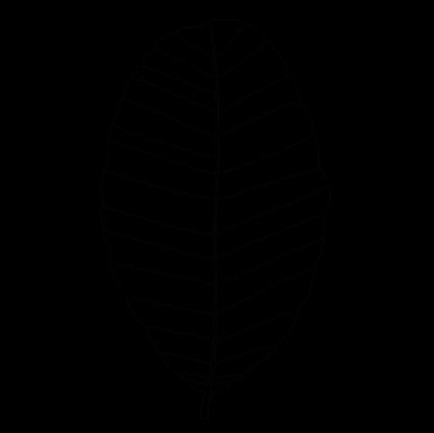 col_logo_sw_28.03.2018
